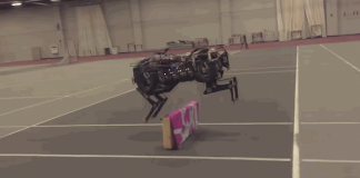 successful cheetah robot