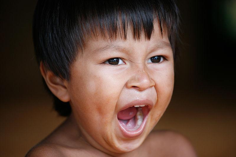 By Alex Proimos from Sydney, Australia (The Yawn - Embera VillageUploaded by russavia) [CC BY 2.0], via Wikimedia Commons